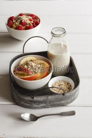 bowl of porridge with raspberries and