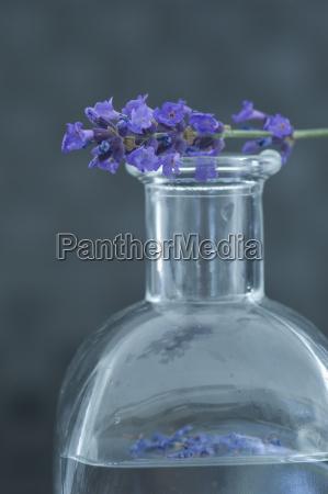 aromaoel in einer glasflasche und ein