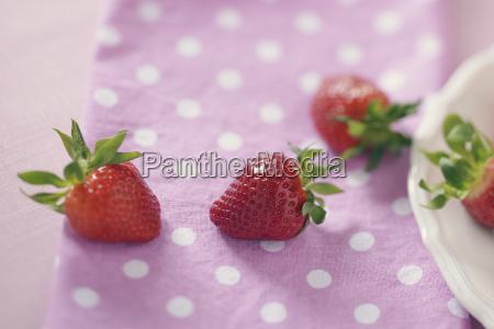 erdbeeren auf rosa tuch