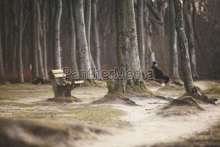 germany nienhagen empty bench in the