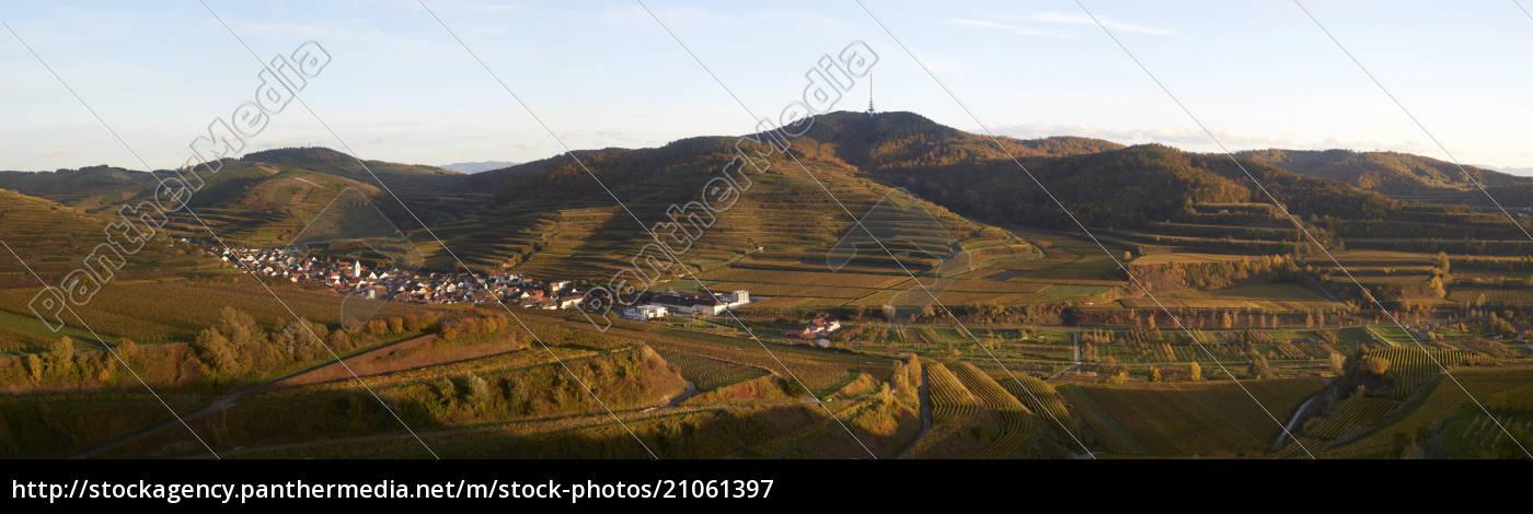 deutschland, baden-württemberg, oberbergen, vogtsburg, im, kaiserstuhl, totenkopf - 21061397