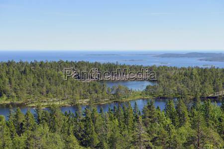 schweden oernskoeldsvik skuleskogen nationalpark mit seen