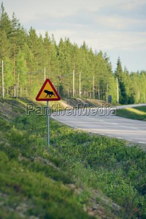 sweden jokkmokk elk crossing road sign