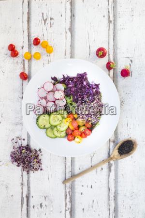 teller mit bio blattsalat rotkohl tomaten