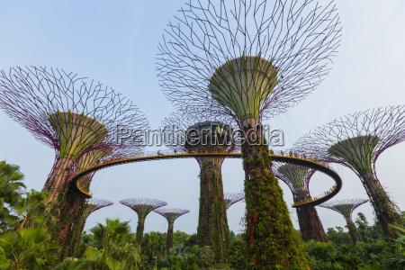 singapur gaerten an der bucht supertree