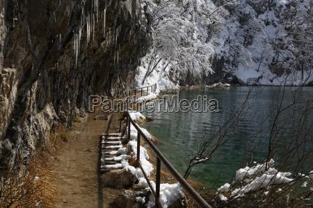 fahrt reisen baum winter nationalpark outdoor