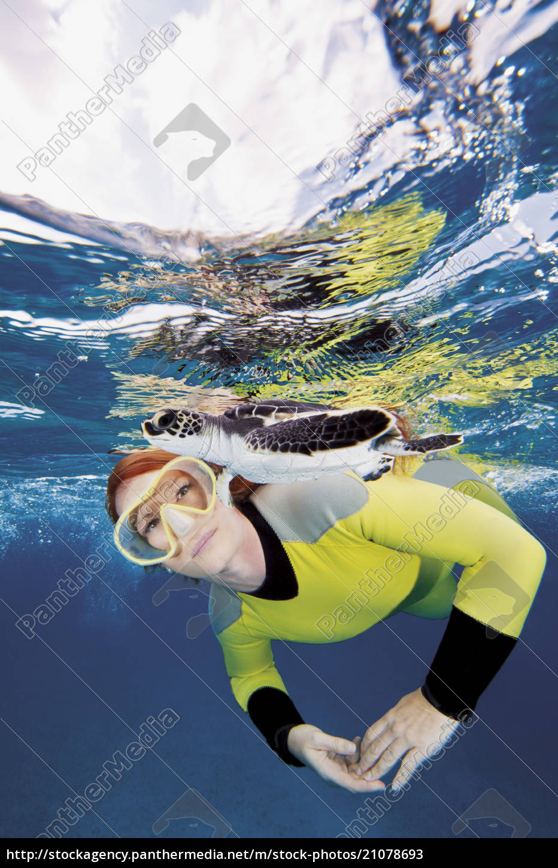 bahamas, , diver, looking, at, green, sea - 21078693