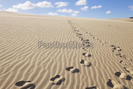 new zealand footprints on te paki