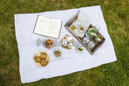 picknick mit vegetarischen snacks auf der