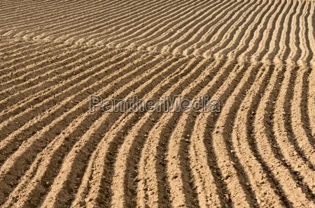landwirtschaft ackerbau feld outdoor freiluft freiluftaktivitaet