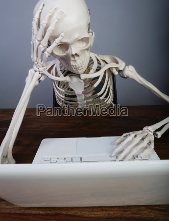 studio skelett arbeiten am laptop