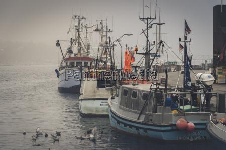 deutschland schleswig holstein eckernfoerde fischerboote im
