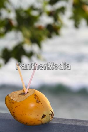orange apfelsine pomeranze fahrt reisen trinken