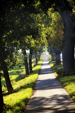 germany schleswig holstein klingberg path with