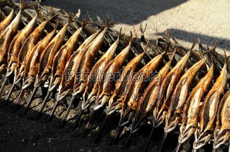 germany bavaria munich grilled fish on