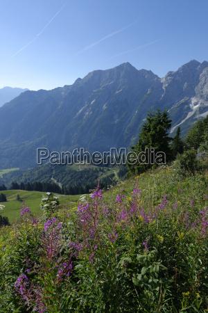 germany bavaria upper bavaria alps berchtesgadener