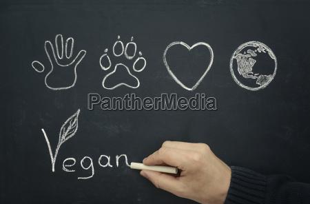 mann zeichnet veganes konzept auf tafel