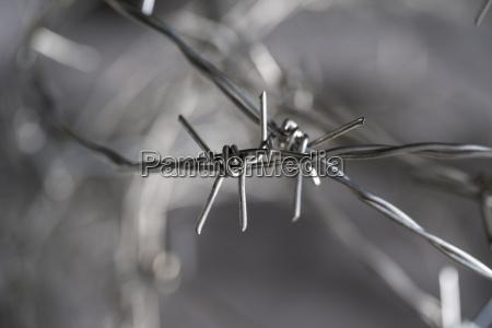 studio barb wire close up