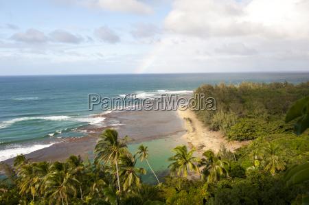 usa hawaii view of kee beach