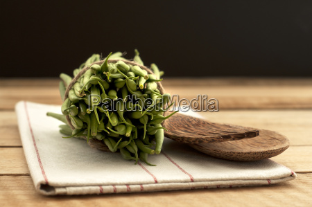 bush beans with wooden spoon and
