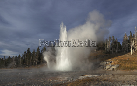 view of grand geyser at yellowstone