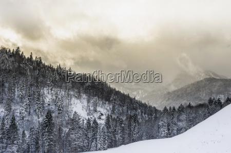germany bavaria berchtesgadener land winter landscape