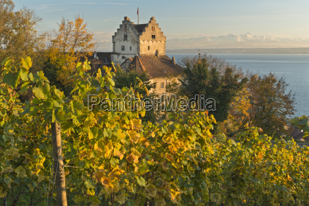 germany view of vineyards next to