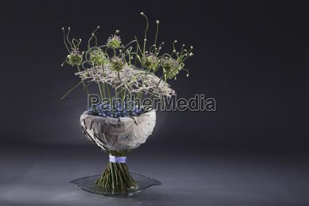 abmachung blume pflanze gewaechs bluete erbluehen