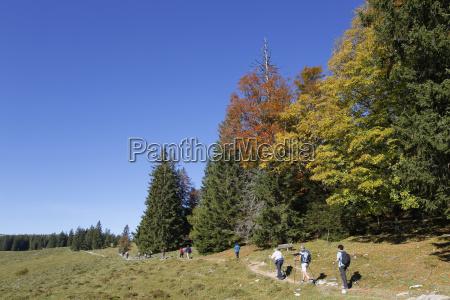 austria salzburg view of people hiking