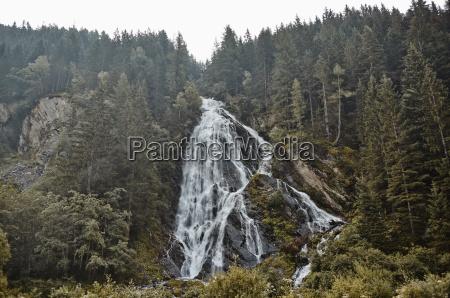 baum nationalpark alpen austria wasserfall outdoor