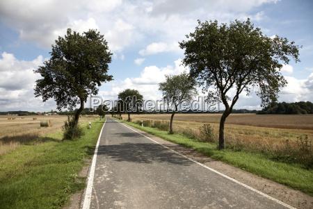 germany brandenburg view of empty road