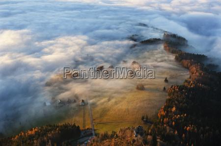 austria salzkammergut trees covered with fog