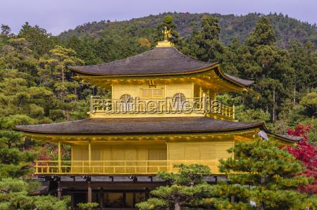 fahrt reisen religion tempel baum outdoor