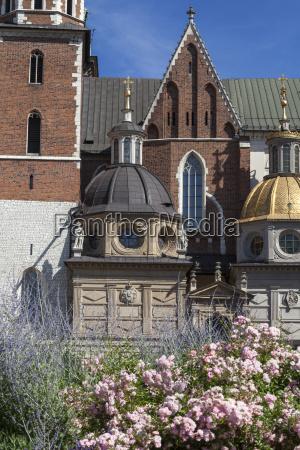 wawel kathedrale auf dem wawel huegel