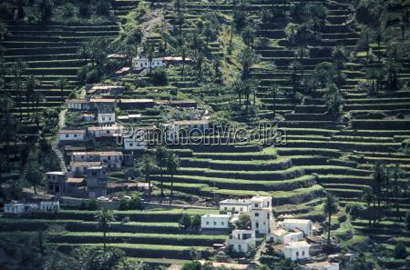 terrace cultivation in valle gran rey