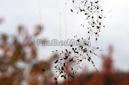 deutschland baden wuerttemberg stuttgart splatter auf