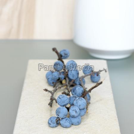 blau frische frucht obst dekoration ausschmueckung