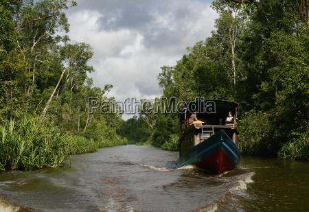 indonesia borneo tanjunj puting national park