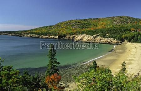 usa sandy beach arcadia national park