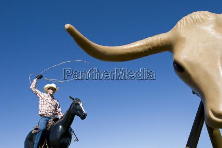 usa texas dallas cowboy using lasso