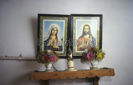 religion blume pflanze gewaechs indien mauer