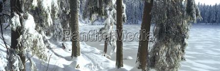 germany baden wuerttemberg schwarzwald lake mummelsee
