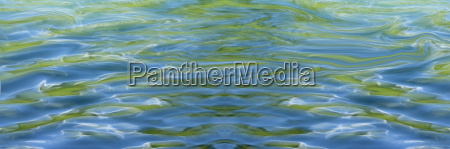 germany lake constance water reflections