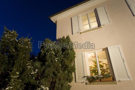 germany christmas tree in window