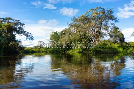 flooded amazon jungle