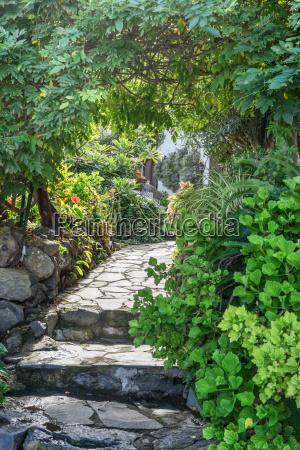 walk in a tropical garden
