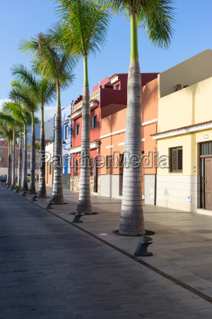 street with colorful houses and palm