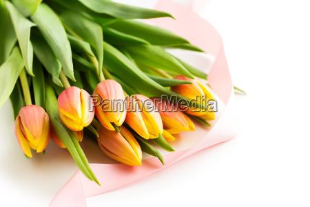 haufen orangefarbener tulpenblueten