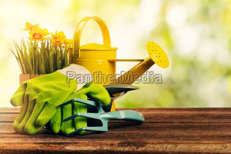 set of gardening tools on sunny
