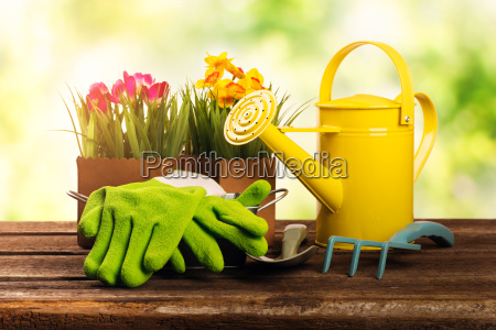 gardening tools and flowers on old